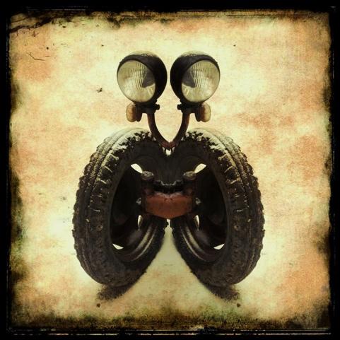 iDogma Foto See Me Wheel Me