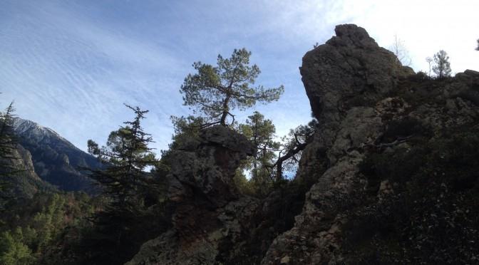 Waldbrand, Kipling, Wunderland