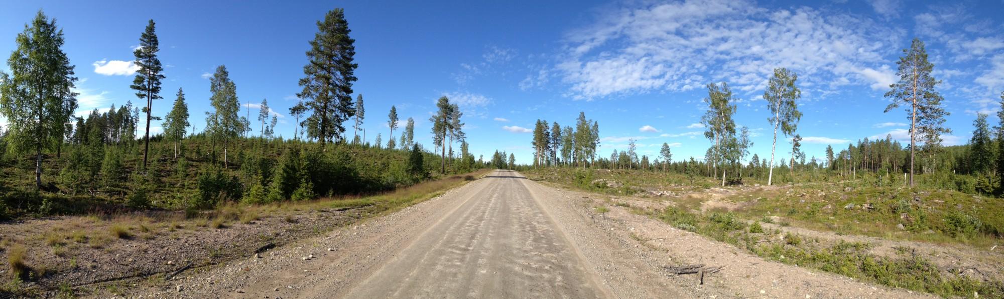 Ein Panorama der Straße, auf der mir weniger als ein Auto pro Stunde begegneten. Kurz vor Gråträsk.