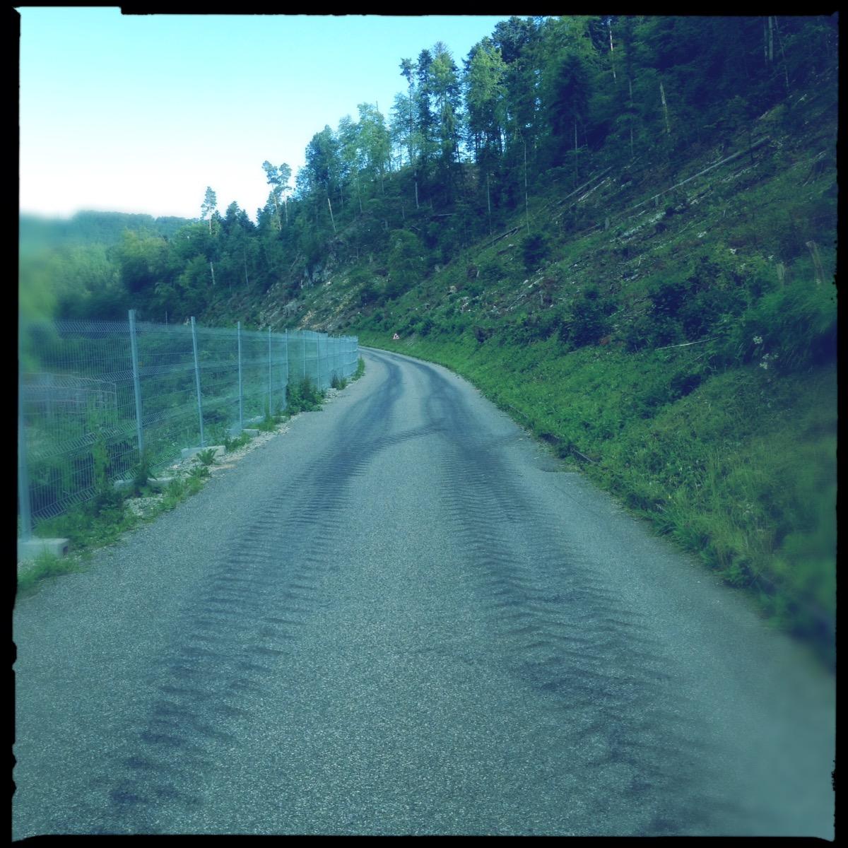 Quadratisches grüngraues Straßenbild. Man sieht Teer, Bewuchs beiderseits und Gummispuren.