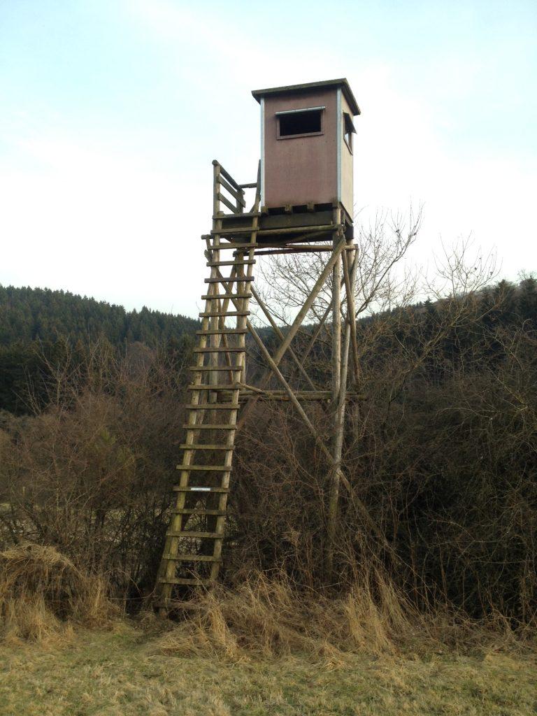 Der vermutlich höchste Hochsitz von Rheinland-Pfalz steht in Schönfeld unweit von Stadtkyll