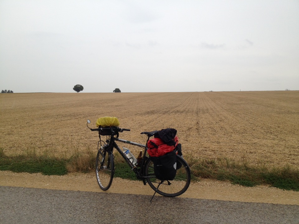 Reiserad vor Stoppelfeld. Am Horizont zwei Bäume.