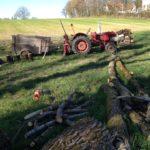 einige liegende Stämme führen den Blick auf einen roten, uralten Traktor mit kleinem Anhänger zu. Im Hintergrund eine Baumreihe am Rad eines kahlen Achers.