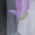 Eine zarte, lila Blume vor Hintergrund, der von links schwarz bis hellgrau trikolort.