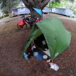 Weitwinkelaufnahme Zelt mit Fahrrad vor Baum, Fischaugeneffekt.