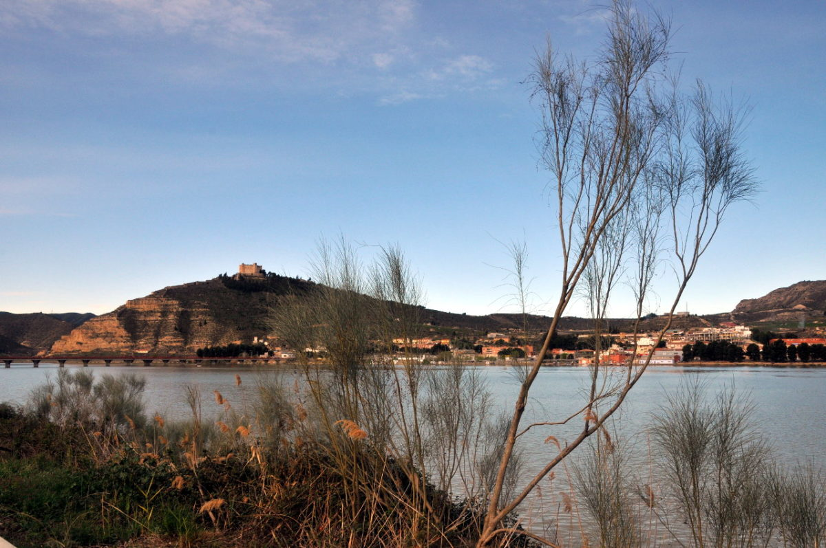 Blick über ziseligen Uferbewuchs auf einen blauen Fluss unter blauem Himmel. Auf einem Hühel jenseits steht ein Kastell.
