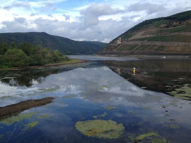 Die untern Zweidrittel des Bildes zeigen Wasser, in dem sich der Hintergrund und der Himmel des oberen Bilddrittels spiegeln. Hügel rechts, Wald links, darüber wolkiger Himmel, im Vordergrund Seerosen oder anderes Grünzeug im Wasser schwimmend.