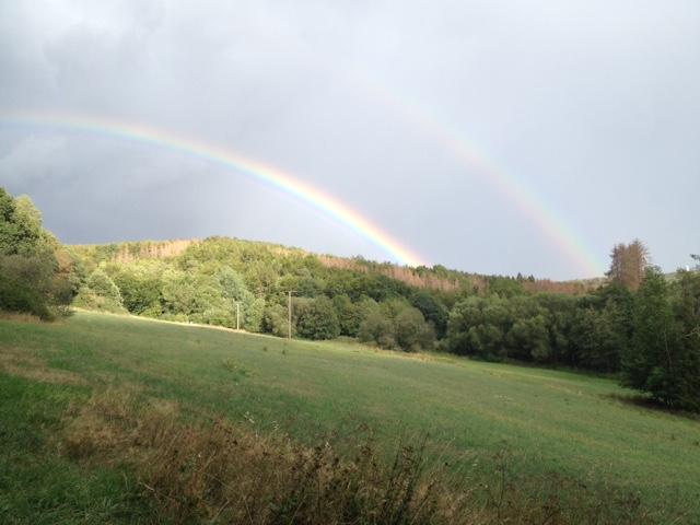 Doppelregenbogen über Wald und Wiesen im Vordergrund. Der Himmel darüber ist hellgrau-hellblau.