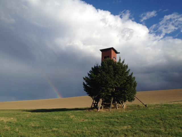 Das Dach eines Hochsitzes und der Fuß des Hochsitzes sind sichtbar, während die Mitte desselben von einem runden Baum verdeckt werden. Der Hochsitz steht auf einer Wiese. Im Hintergrund ein brachstehender Acker. Am Horizont ein Stück eines Regenbogens, darüber eine große Wolkenwand, rechts bereits wieder Blauhimmel.