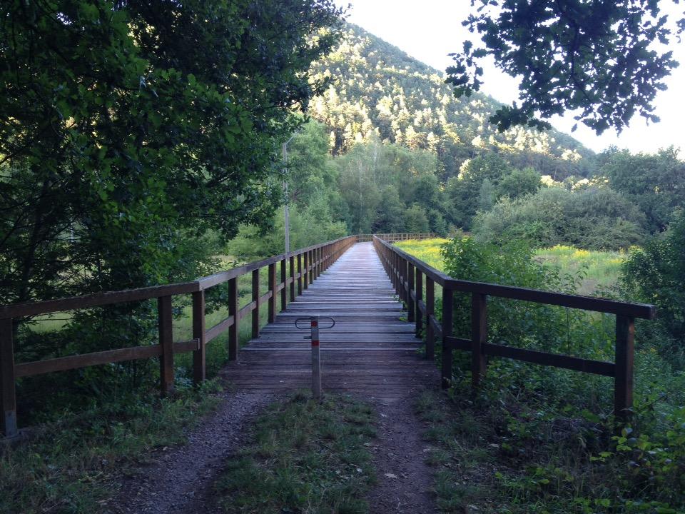 Brücke aus Holz schlängelt sich über eine natürliche Sumpfwiese