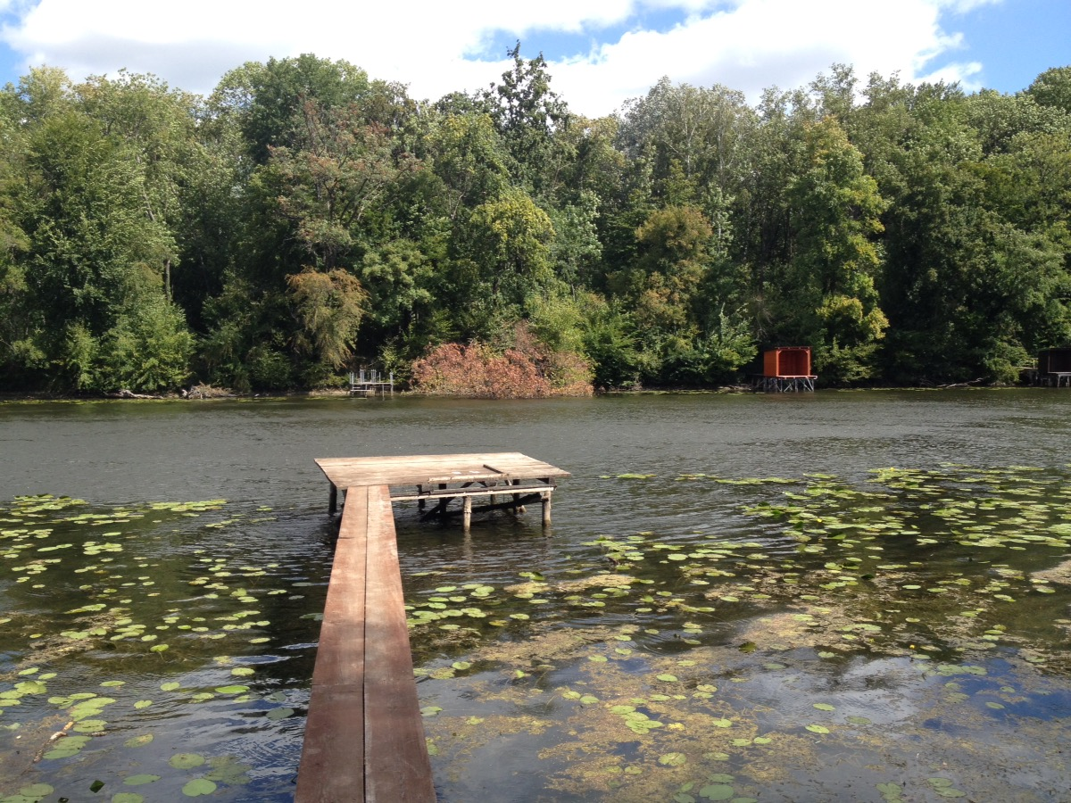 Holzsteg, der in den Fluss ragt. Im Fluss schwimmen Seerosenblätter. Am andern Ufer Bäume, darüber wolkiger Blauhimmel.