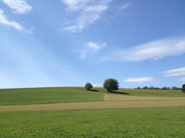 Das untere Bilddrittel zeigt quer durchs Bild Wiesen mit einzelnen runden, grünen Bäumen, darüber zwei Drittel des Bildes Blauhimmel mit einzelnen feinen Wolkebauschen.