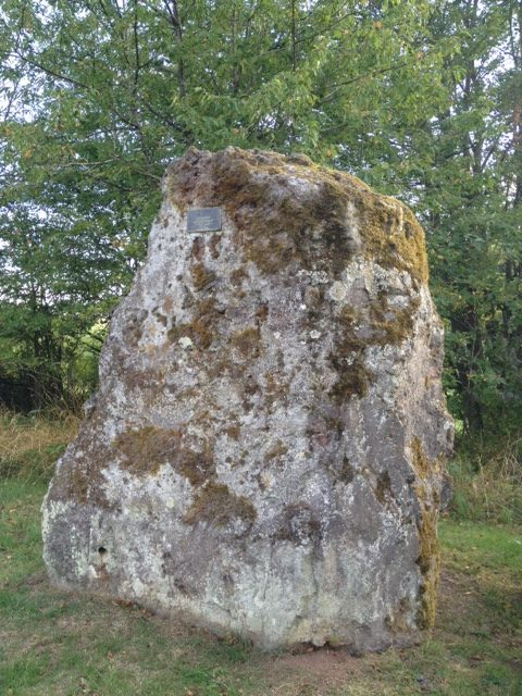 Mitten im Bild ein sehr großer Felsbrocken mit einer nicht lesbaren Infotafel, von Moosen bewachsen. Im Hintergrund Bäume, im Vordergrund Wiese.